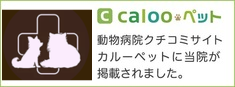 bn_caloopet_040209